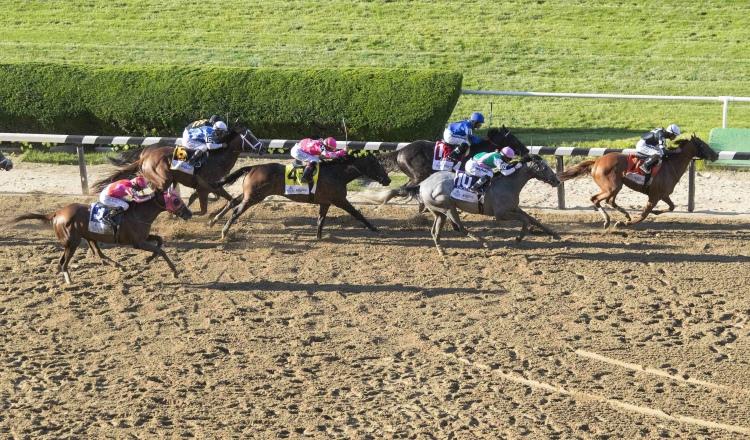 Panameño José Lezcano llega tercero en Belmont Stakes