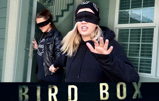 Netflix pide a la gente dejar de hacer el 'Bird Box Challenge'