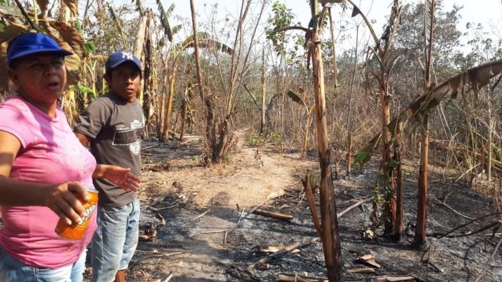 Hombre de 62 años muere calcinado al tratar de sofocar un incendio en Antón