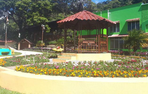 Se expondrán 30 jardines en Feria de Las Flores y del Café en Boquete