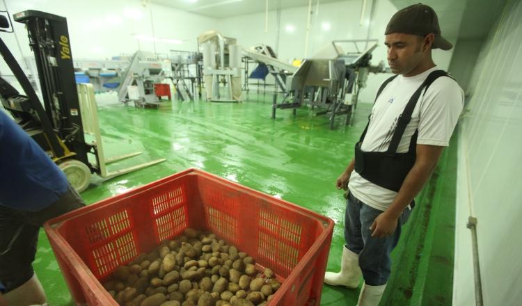 Aupsa y TLC, en mira de los candidatos presidenciales para rescatar al sector agro