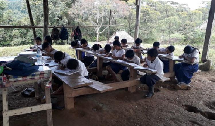 Mayor cantidad de estudiantes reprobados se da en primer grado