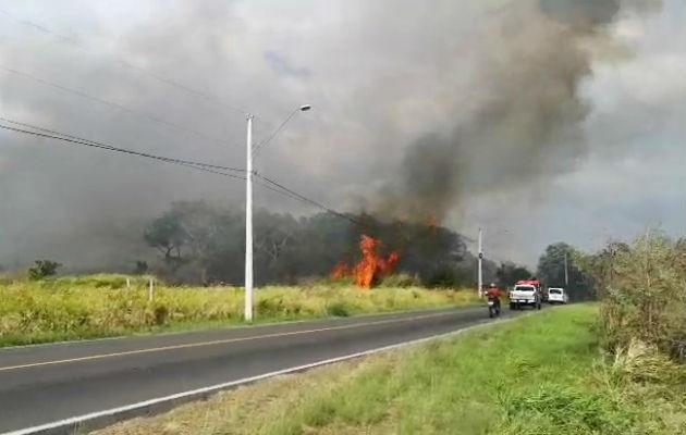 Bomberos acuden a sofocar fuego de masa vegetal en la carretera hacia Veracruz