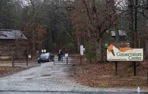 Un león de 14 años mata a una joven cuidadora que limpiaba el recinto del animal