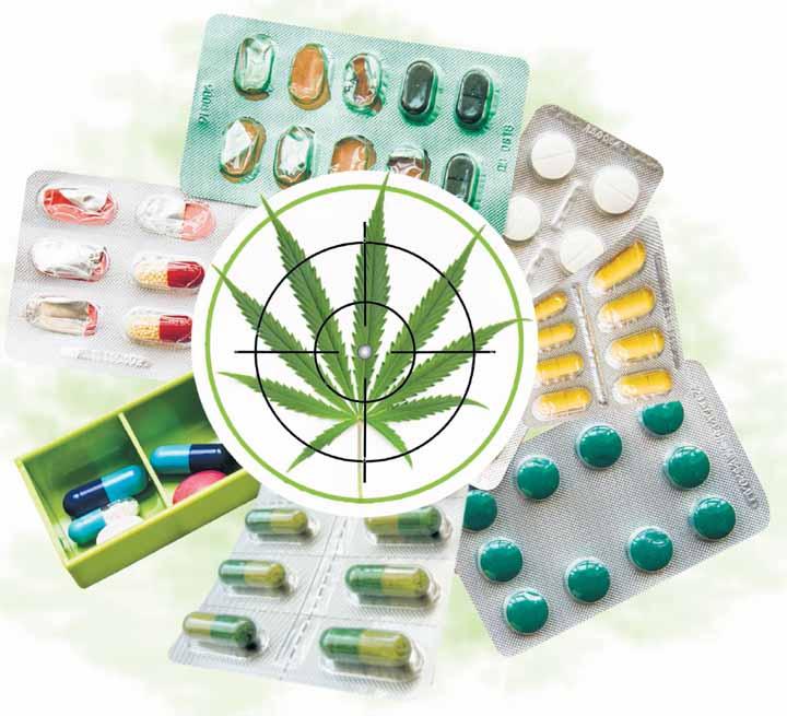 Ley de medicamentos, en la mira de políticos