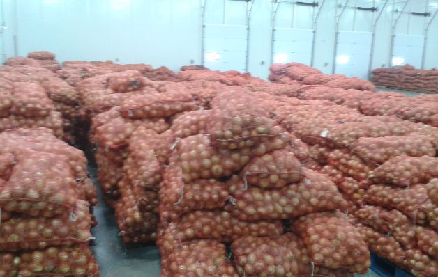 Mida decomisa 500 quintales de cebolla