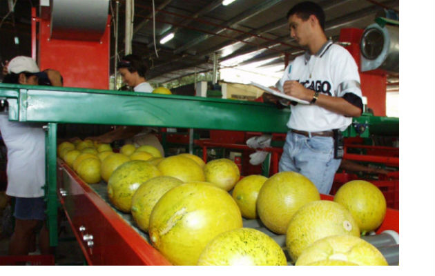 Realizarán diagnóstico del sector industrial panameño