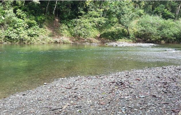 Prohíben bañarse en Río Gatún para no contaminar toma de ... - Panamá América