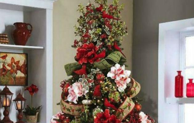 El Tamaño Ideal Del árbol De Navidad Panamá América