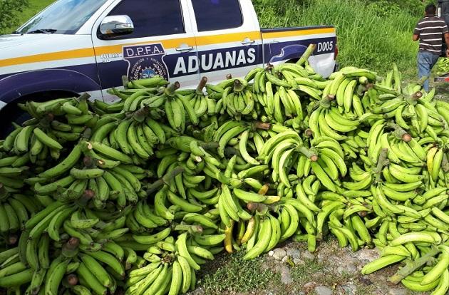 Ministerio de Desarrollo Agropecuario investigará contrabando de plátano en Bocas del Toro