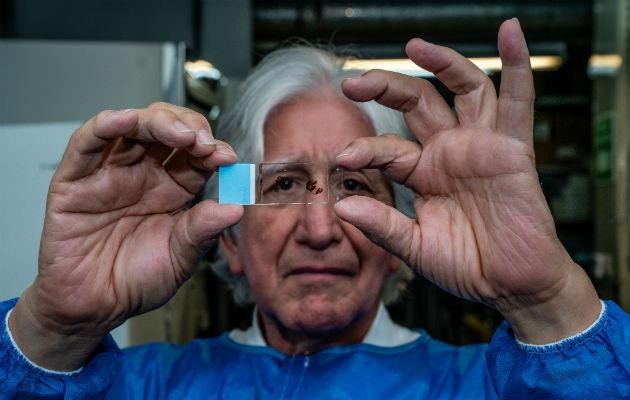 Francisco Lopera ha estudiando una extensa familia colombiana para aprender sobre Alzheimer. Foto/ Federico Rios.
