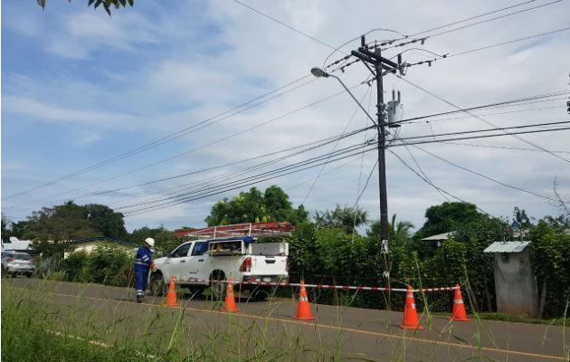 La yegua aparentemente hizo contacto con un cable que se bajaba del poste dentro del potrero. Foto: Thays Domínguez.