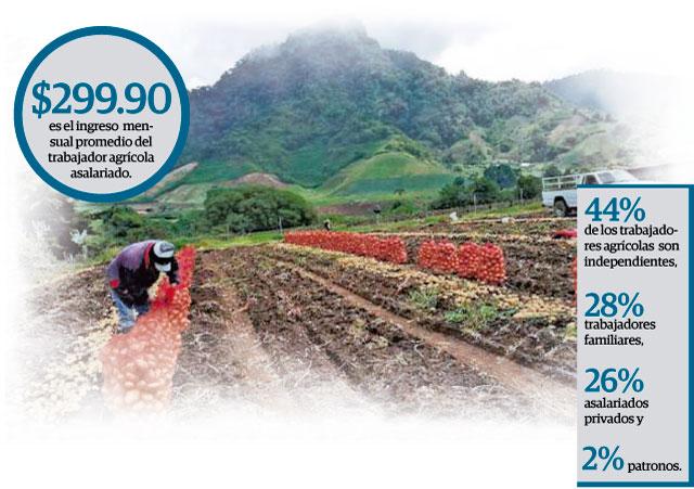 En el 2009 la fuerza laboral agrícola era de 188 mil 588 trabajadores.