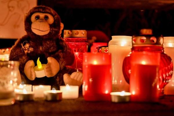 Investigan a tres mujeres por el incendio en un zoológico en Alemania que mató 30 animales