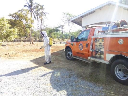 Abejas africanizadas atacan a unos 15 bañistas en el distrito de Alanje