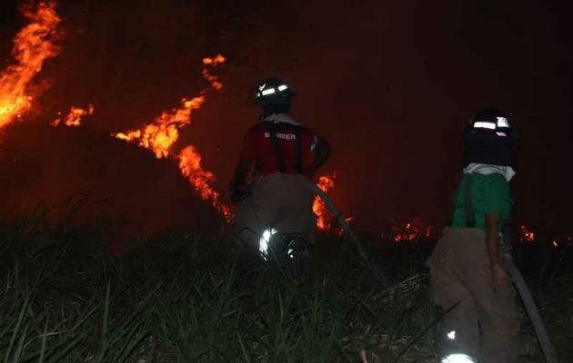 Se registran 37 incendios de masa vegetal en los primeros días del año 2020