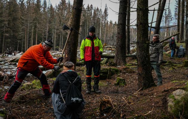 Voluntarios intentan salvar los bosques de la sequía provocada por el cambio climático