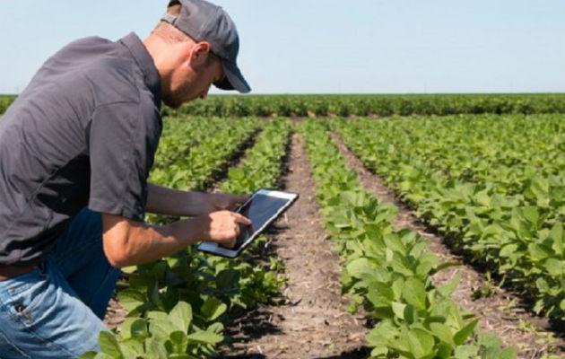 Instituto de Innovación Agropecuaria es necesario para que los productores sean competitivos y productivos