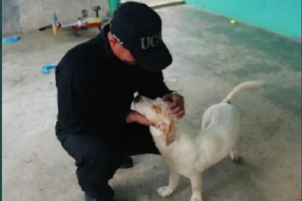 Policía Nacional sanciona a unidad de motorizados que roció gas pimienta a un perro