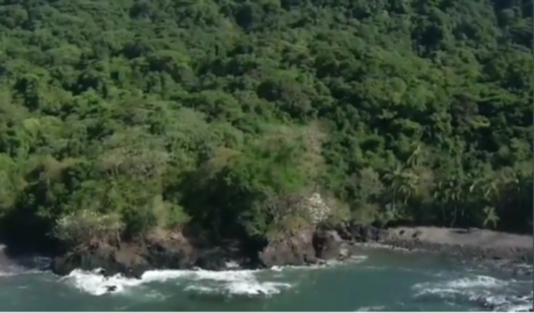 Baja cantidad de hechos contra el ambiente en región del Darién