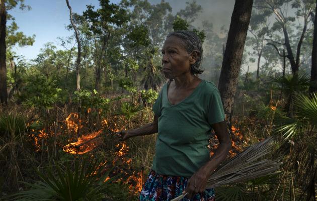 Controlan incendios con método aborigen
