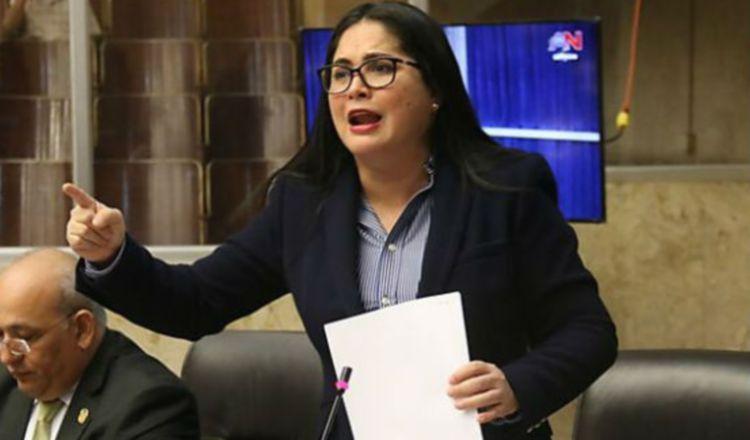 Diputada Zulay Rodríguez pide frenar fuga de capitales con  textos escolares