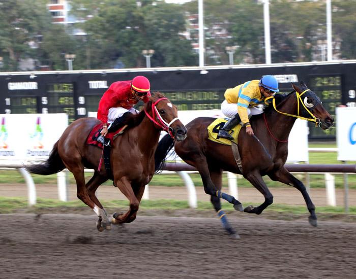 """Diez rivales disputan casi $20 mil en carrera en honor a Adolfo """"Red"""" Tinker"""