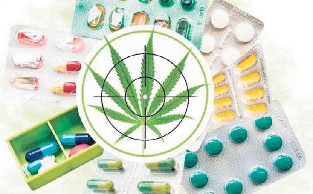Proyecto sobre cannabis queda sujeto a aportes del Ministerio de Salud