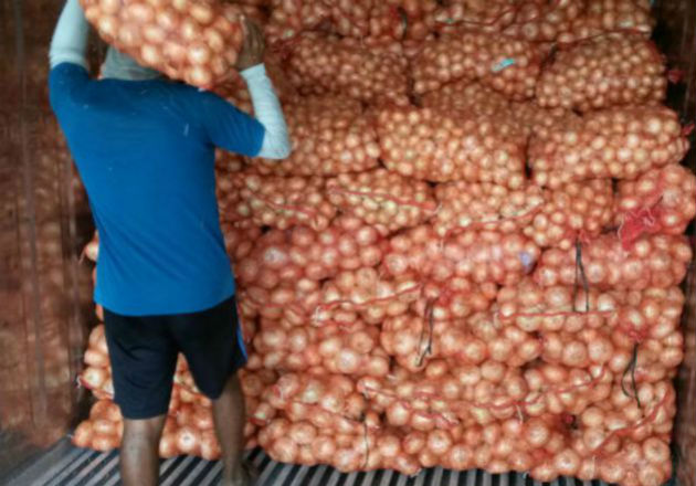 Acodeco analiza incumplimiento del reglamento técnico de la cebolla