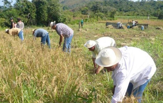 Mida: el sector agropecuario ha sufrido 'canalladas' en los últimos años