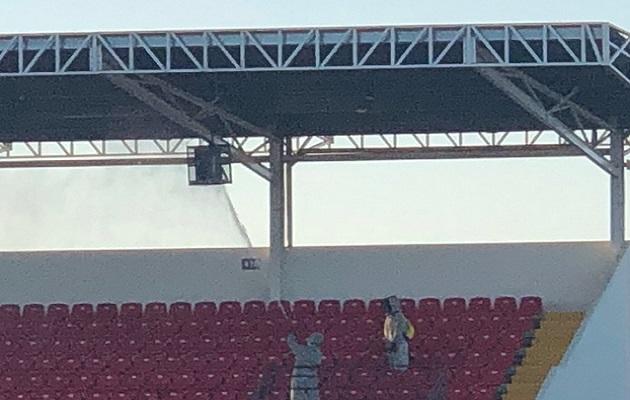 Abejas africanas hacen aplazar el partido entre Chiriquí vs.Tauro