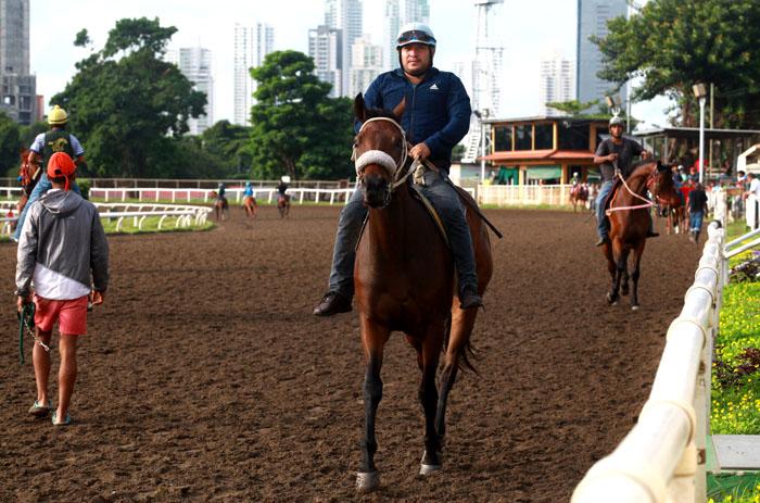 Carreras de caballos se realizarán en el hipódromo  el viernes 13, pero a puertas cerradas por coronavirus