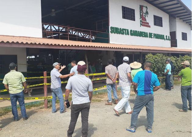 Cae venta en las subastas ganaderas en Guararé por Covid-19