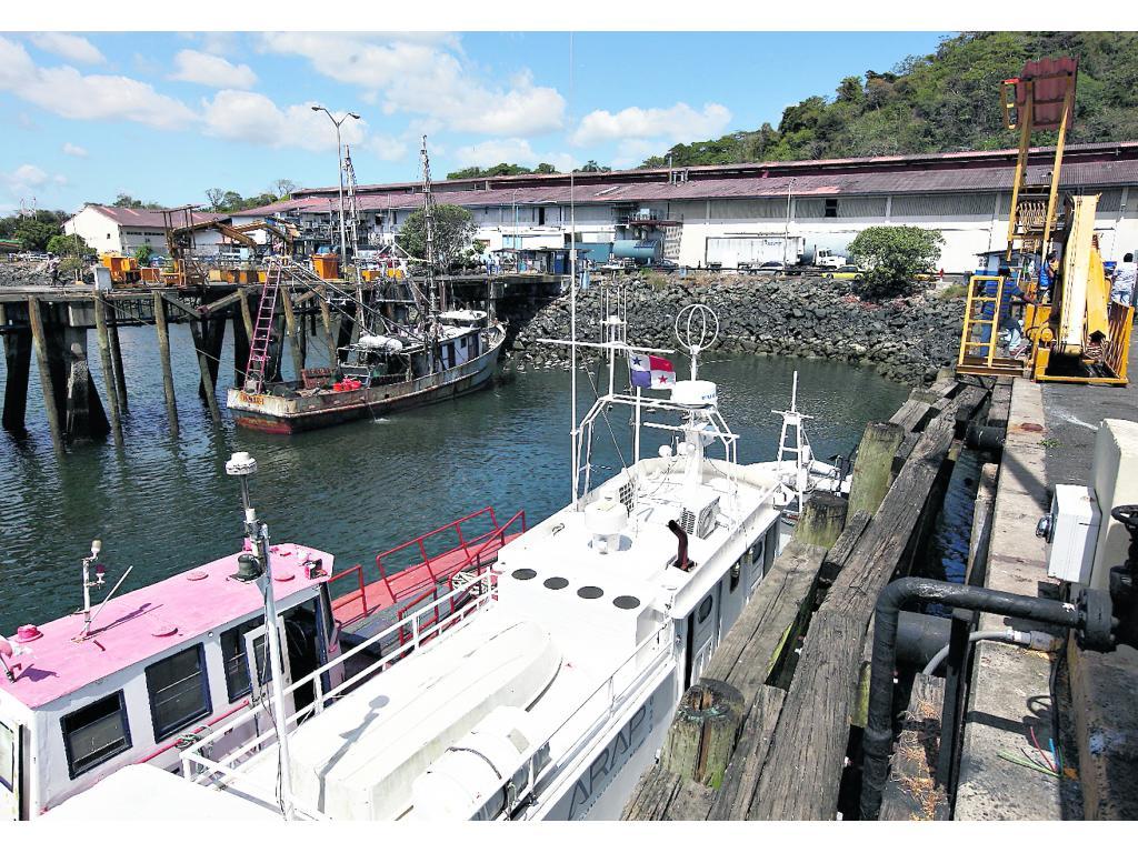Pescadores reinician operaciones, tras levantamiento gradual de la cuarentena