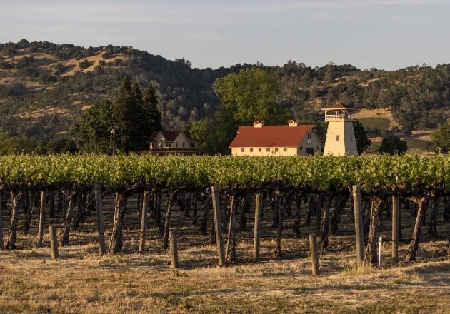 La industria vinícola enfrenta su peor panorama