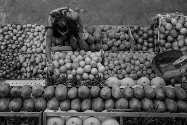 El santuario de las frutas