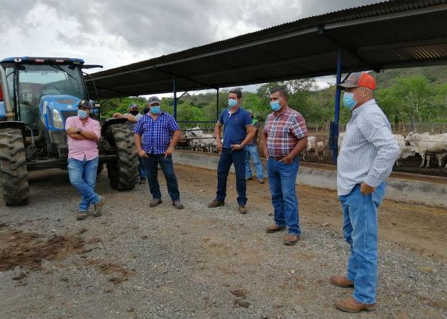 Productores de Azuero piden soluciones para salir de la crisis en el sector