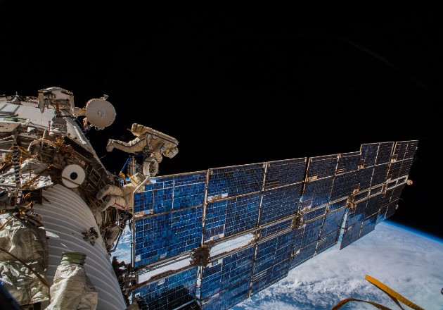 Vigilarán la fauna silvestre desde la Estación Espacial