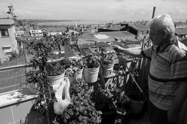 Beneficios de la jardinería en medio del confinamiento por la COVID-19