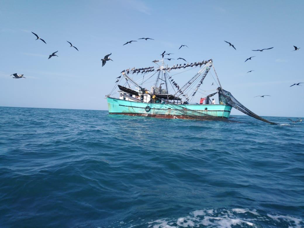 Arap advierte a las naves de bandera panameña sobre el respeto a la soberanía en Islas Galápagos