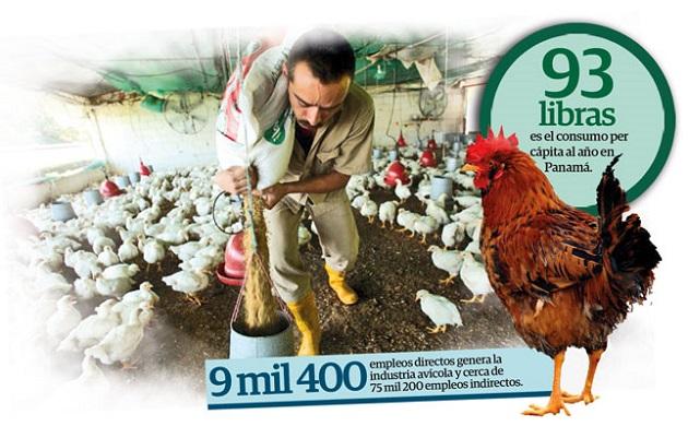 Producción de pollo cae 14.7% tras baja en el consumo de los panameños