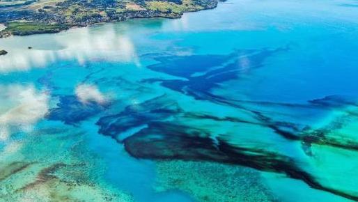Gremios respaldan a la Autoridad Marítima de Panamá tras accidente de buque, con bandera panameña, en Isla Mauricio
