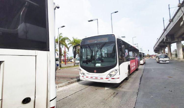 Buses eléctricos darán servicio de transporte público pronto