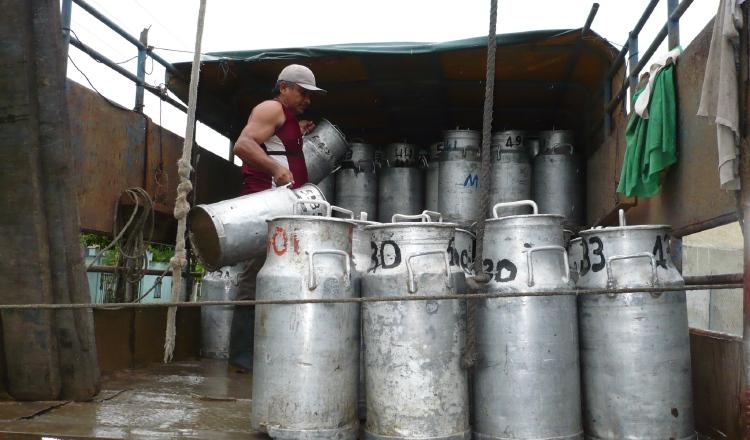IICA destaca sector lácteo como vital para la seguridad alimentaria