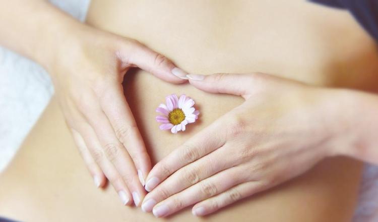 Síndrome de ovarios poliquísticos: Afecta a un 12% de las mujeres en edad reproductiva