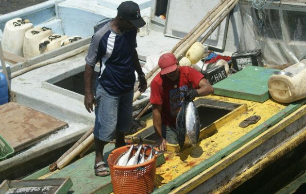Logran consenso en proyecto de ley que regula el sector pesquero en Panamá