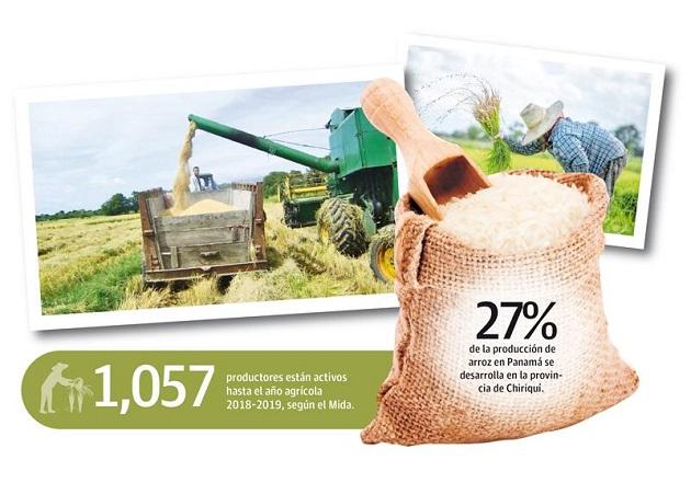 Unos 643 productores de arroz han abandonado la actividad en los últimos años