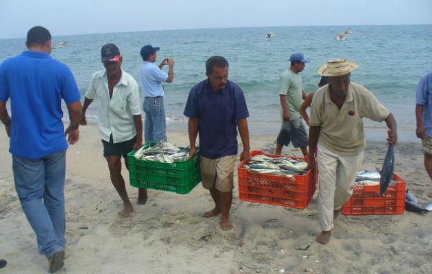 Panamá demanda una ley de Pesca moderna