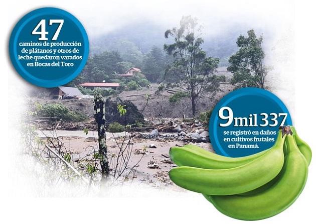 Mida calculó en $11 millones las pérdidas en el sector agro por el huracán ETA