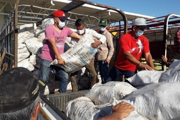 Ministro del Mida llamará a una reunión de cadena agroalimentaria para autorizar la importación de cebolla